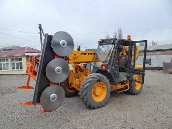 Tree pruner for a loader